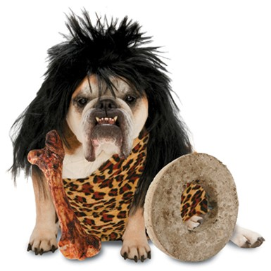 Caveman Dog Costume - Zelda Cave Dog