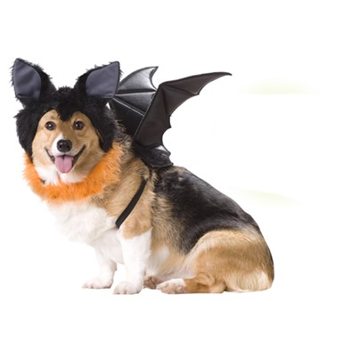 Dog Bat Costume