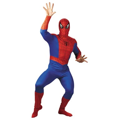 The Amazing Spider-Man Adult Standard Size Costume