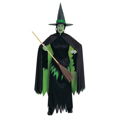 Wicked Witch of the West Halloween Costume - Wizard of Oz