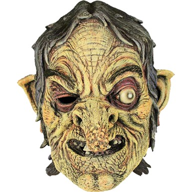 Witch Full Adult Halloween Costume Accessory Mask