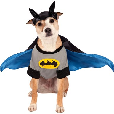 Batman Pet Halloween Superhero Costume