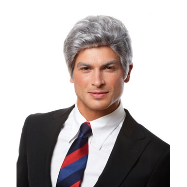 Bill Clinton Grey Halloween Costume Wig