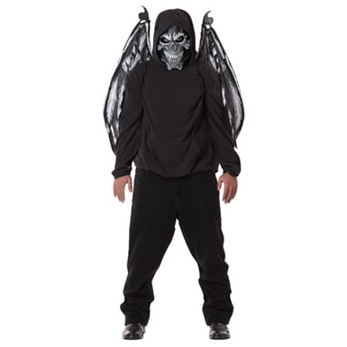 Black Fallen Angel Mask And Wings Adult Costume Accessory