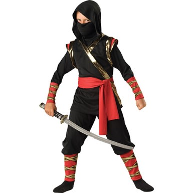 Boys Master Ninja Martial Arts Halloween Costume