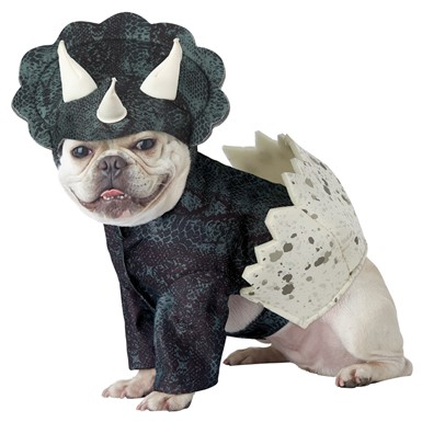 Dino Pup Triceratops Dog Halloween Costume