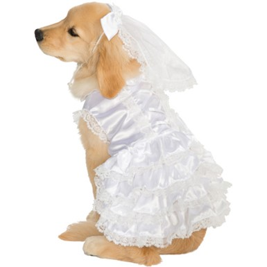 Dog Blushing Bride Costume