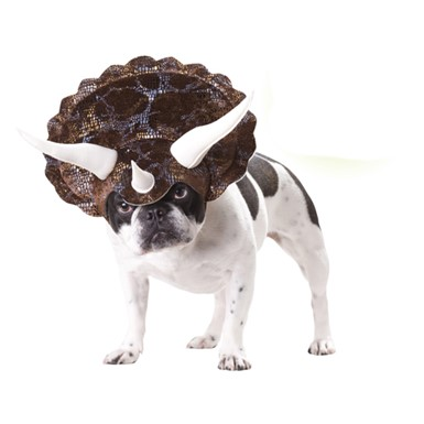 Dog Triceratops Costume