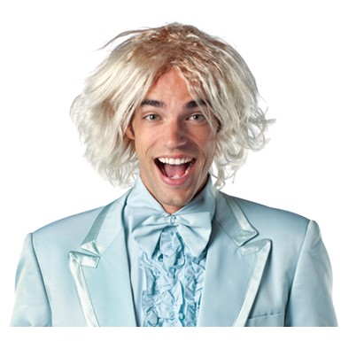 Dumb And Dumber Harry Adult Halloween Wig