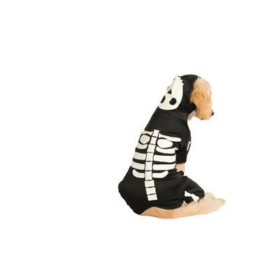 Pet Dog Glowing Skeleton Halloween Puppy Costume