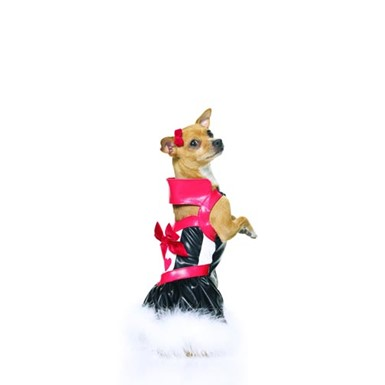 Puppy Queen Pet Costume
