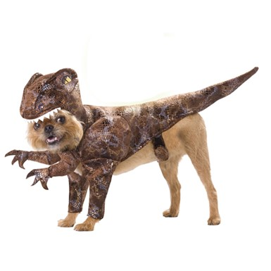 Raptor Dinosaur Dog Animal Planet Pet Halloween Costume