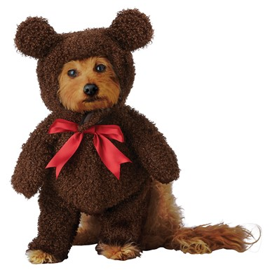 Teddy Bear Dog Halloween Costume