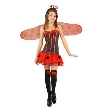 Teen Winged Lady Bug Girls Halloween Costume