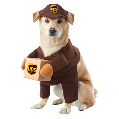 UPS Pal Halloween Pet Costume