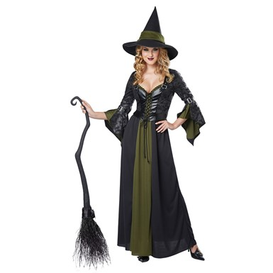 Womens Classic Witch Halloween Costume