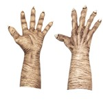 Adult Flesh Evil Witch Hands Costume Accessory