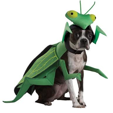 Praying Mantis Animal Planet Pet Halloween Costume  sc 1 st  Costume Kingdom & Praying Mantis Animal Planet Pet Halloween Costume u2013 Dog Halloween ...